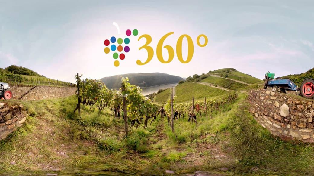 360 Video deutsche Weine